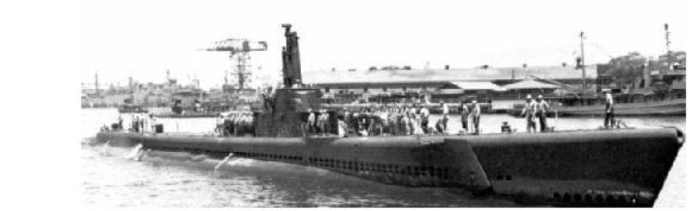 SS TAMAHOKO MARU